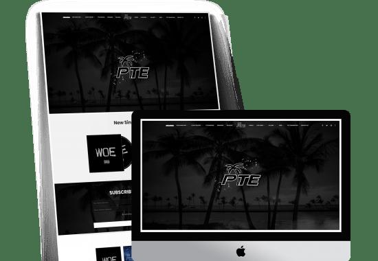 Palm Tree Ent. Website