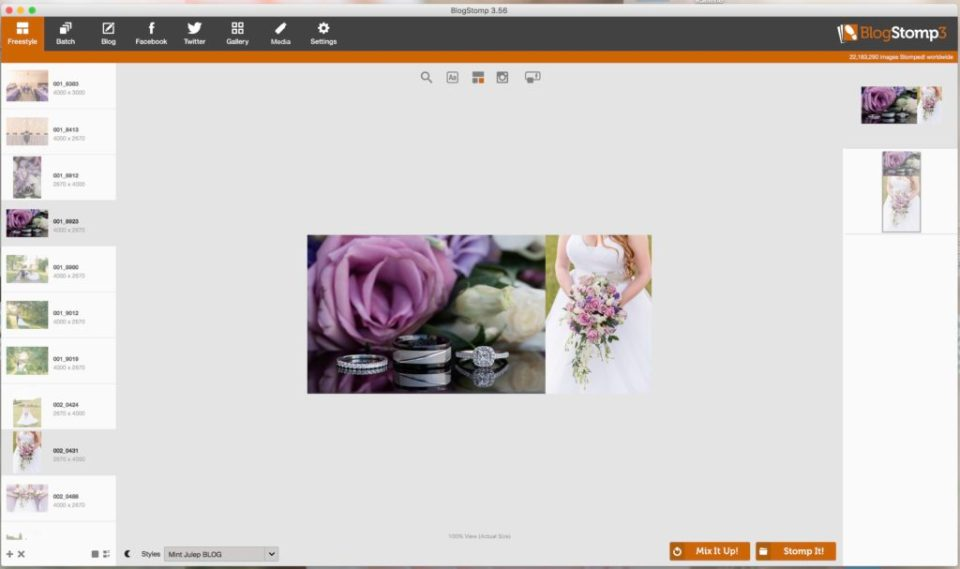 BlogStomp3- How to use BlogStomp in your photography business