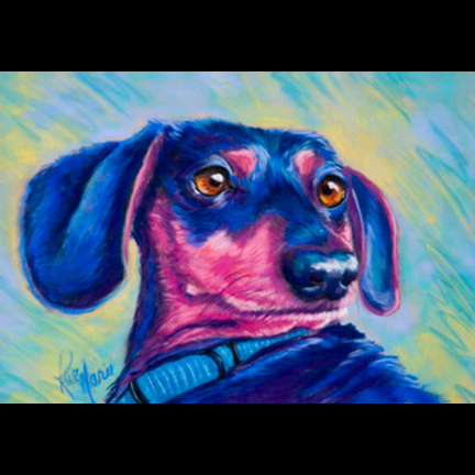 playful-pet-portrait-by-rae-marie