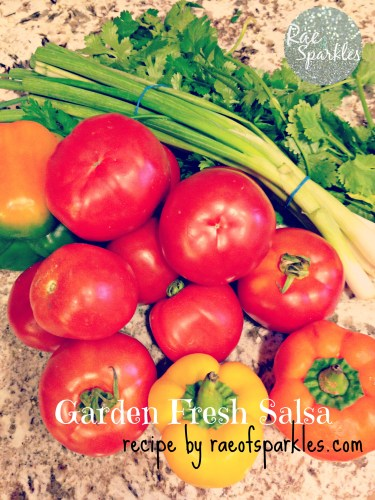 Garden Fresh Salsa Recipe