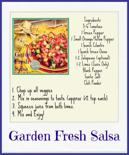 Garden Fresh Salsa Recipe Photo