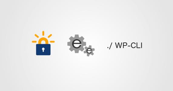 Configurando SSL com Let's Encrypt, EasyEngine e WP-CLI