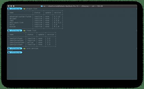 WP-CLI no terminal