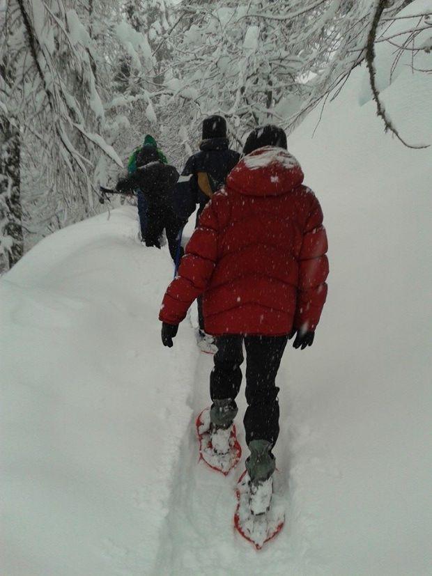 Escursioni con le racchette da neve: in cammino