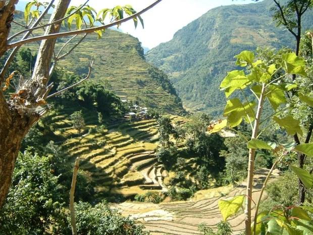 Annapurna Circuit - Prima parte del cammino tra le risaie