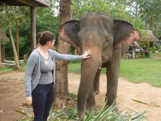 L'Elephant Village a Luang Prabang
