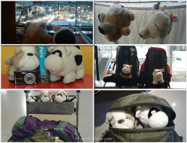 Cosa mettere in valigia: le mascotte dei nostri viaggi
