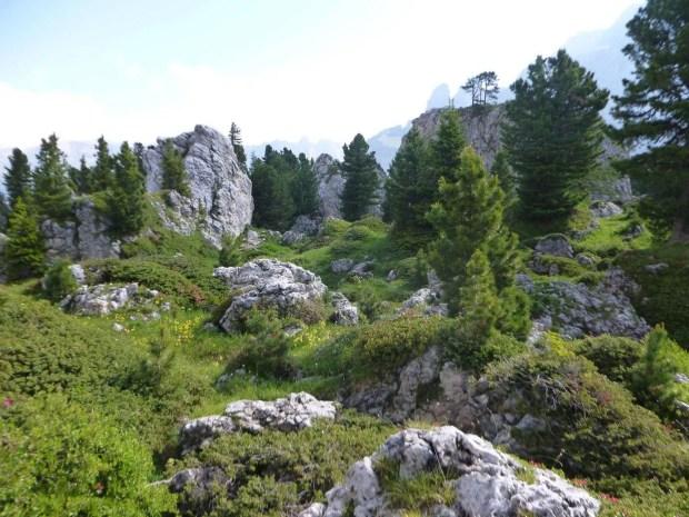 Il giro del Sassolungo: la città dei sassi