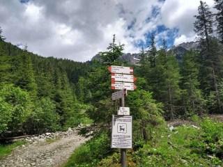 Escuesioni in Val Monzoni