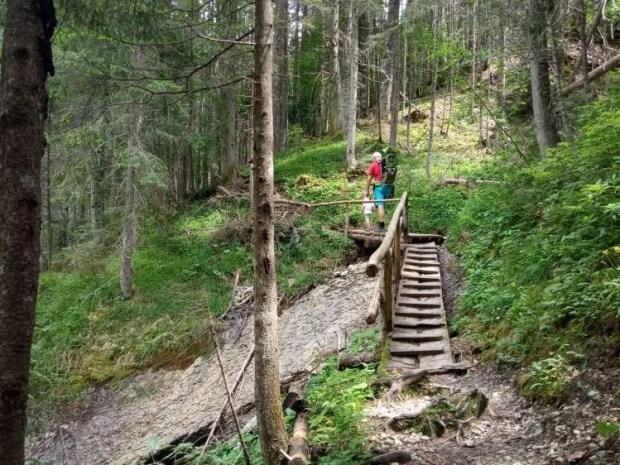 Lungo il Sentiero naturalistico del Piave