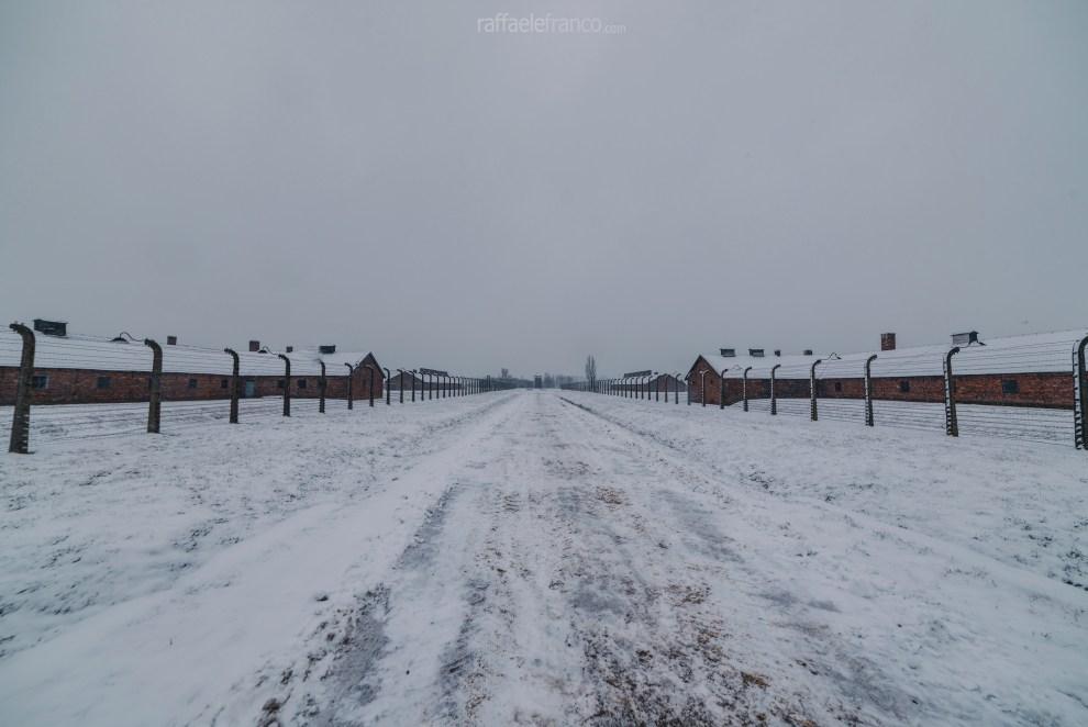 La divisione in settori non comunicanti del campo di Auschwitz-Birkenau II