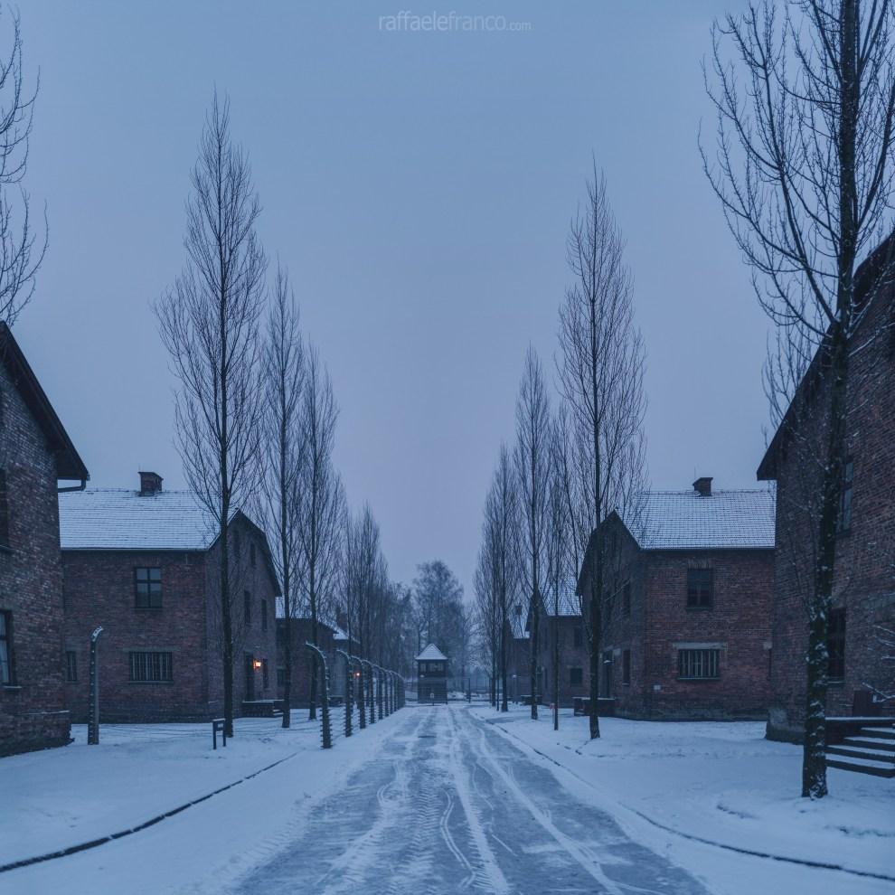 I Viali di Auschwitz I