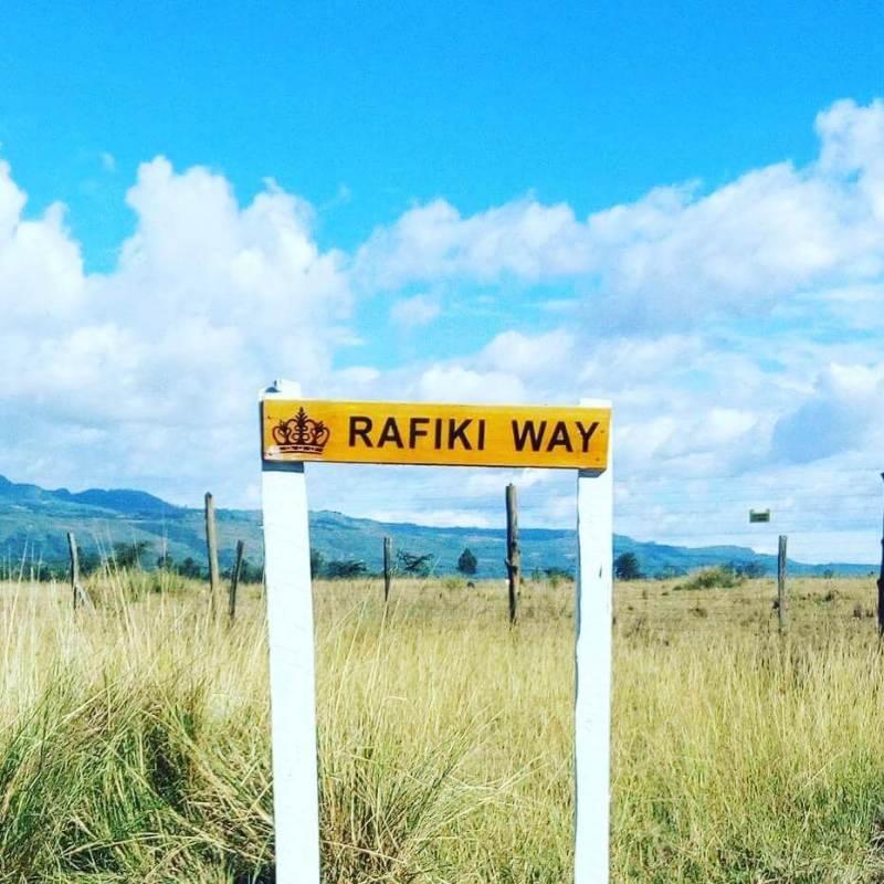 Rafiki Way