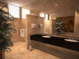 028-Toilet VIP