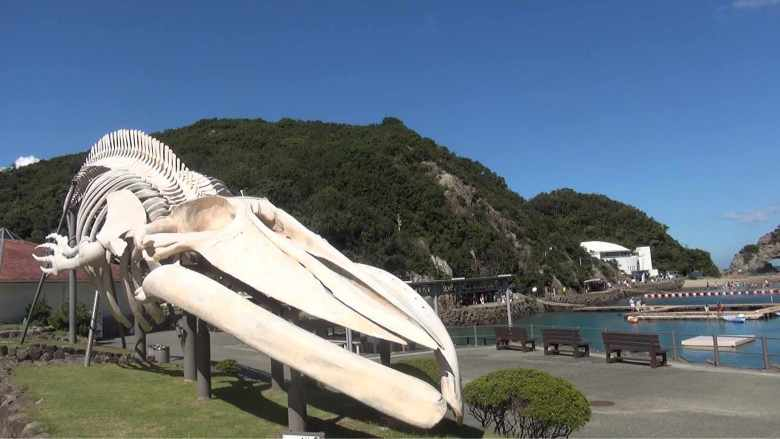 The Whale Museum in the seaside town of Taiji, where the tradition of hunting whales spans generations. (Photos courtesy Yagi Films Inc.)
