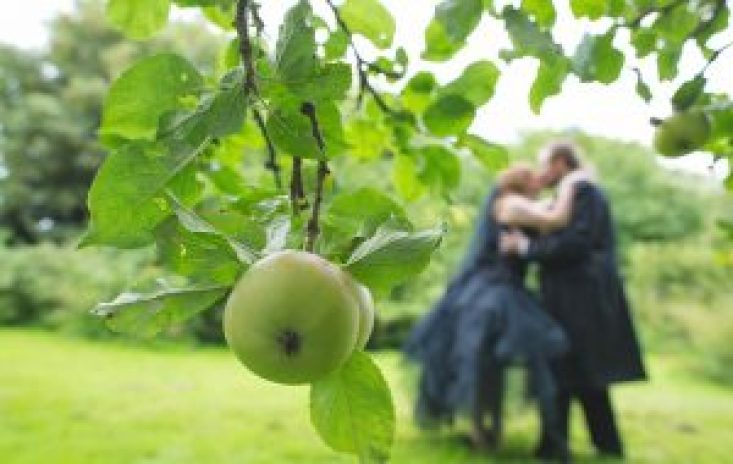 In focus picture of an apple bride and groom not in focus