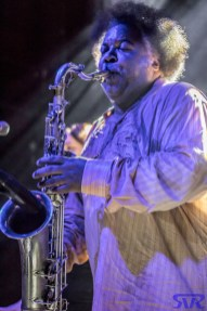 The_Ron_Holloway_Band_The_8x10_2016-05-25_MG_5501