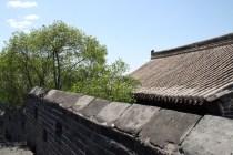 Une maison et un arbre, un peu perdus sur le Grand Mur