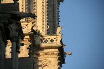 Les gargouilles de Notre-Dame