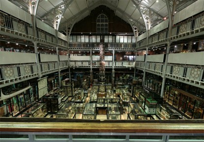 Photo © Pitt Rivers Museum