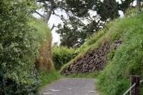 L'herbe a poussé depuis que Frodon et Gandalf sont passés par là