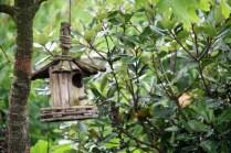 Les Hobbits aussi pensent aux petits oiseaux