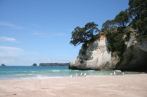NZ_CATHEDRAL_COVE_21
