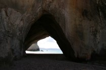 NZ_CATHEDRAL_COVE_22