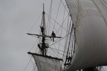 En haut du mât d'artimon, des gabiers de l'Hermione profite du spectacle après avoir cargué la voile