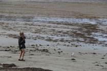 Photographier la faune