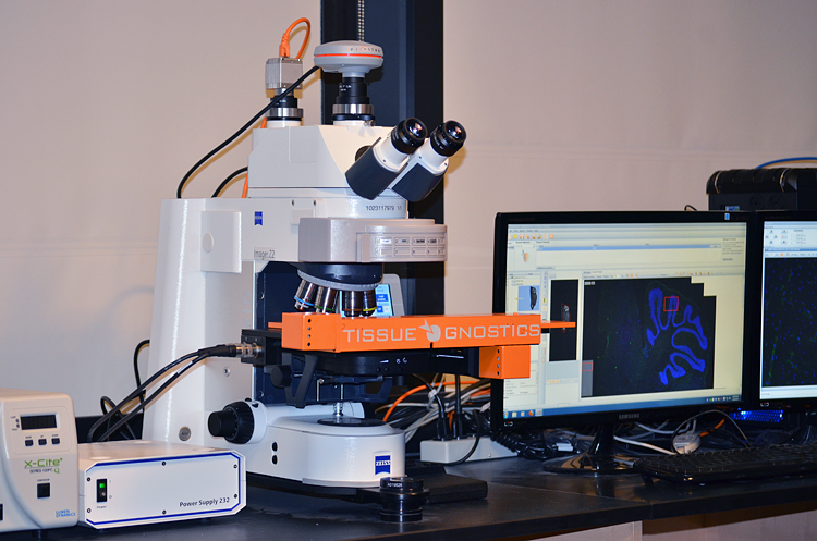 Microscopy « Ragon Institute of MGH, MIT and Harvard