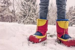 Der Winter- unser Lehrmeister in Sachen Dankbarkeit