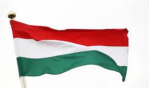 أقوى 10 أمثال مجرية