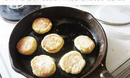 Gluten-Free Syrniki (Russian Fried Cheese Cakes)