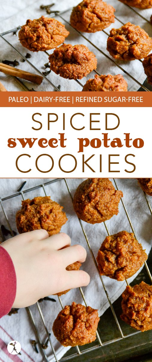 Looking for a cookie that is sweet and healthy at the same time? Give these Spiced Paleo Sweet Potato Cookies a try! They're even a hit with non-sweet-potato-lovers!