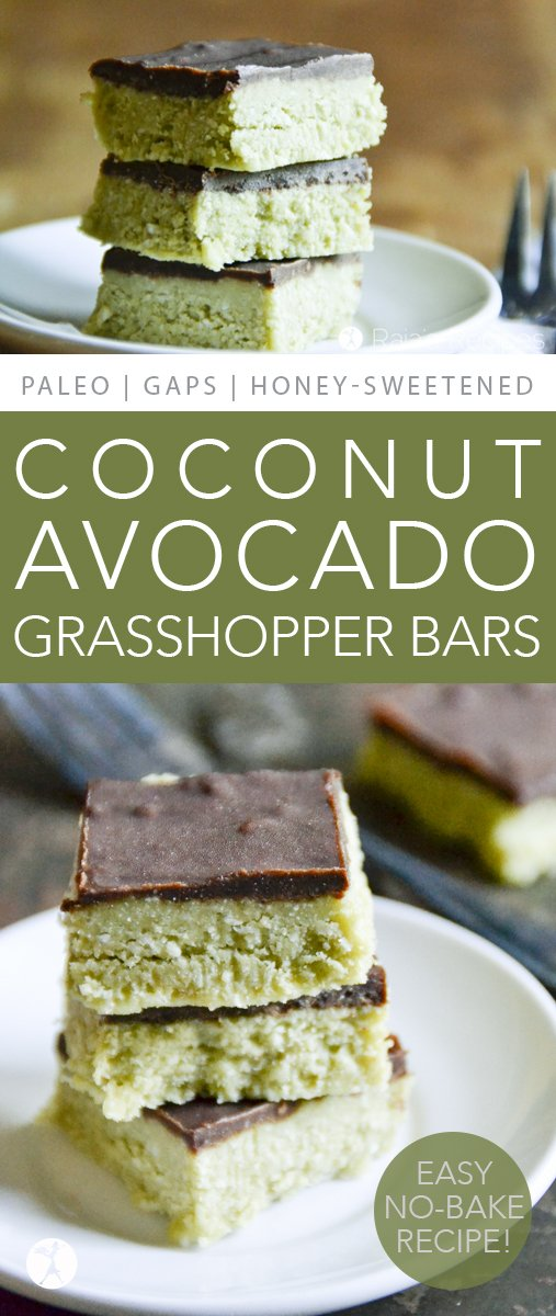 These Coconut & Avocado Grasshopper Bars are allergy-friendly and full of healthy, real-food deliciousness. And they're completely devoid of grasshoppers...  #coconut #avocado #grasshopper #nobake #paleo #glutenfree #dairyfree #peppermint #chocolate #realfood #dessert