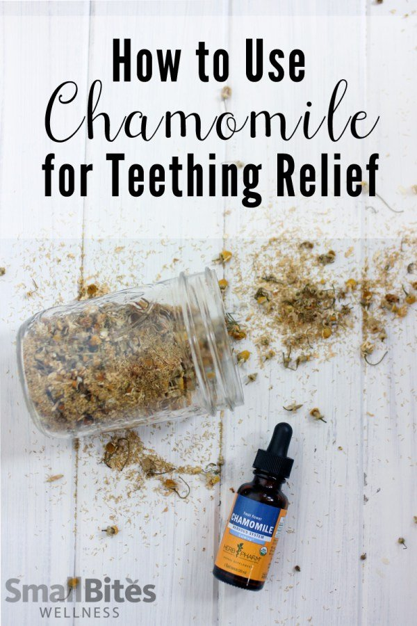 Natural Teething Remedies: Chamomile from Small Bites Wellness