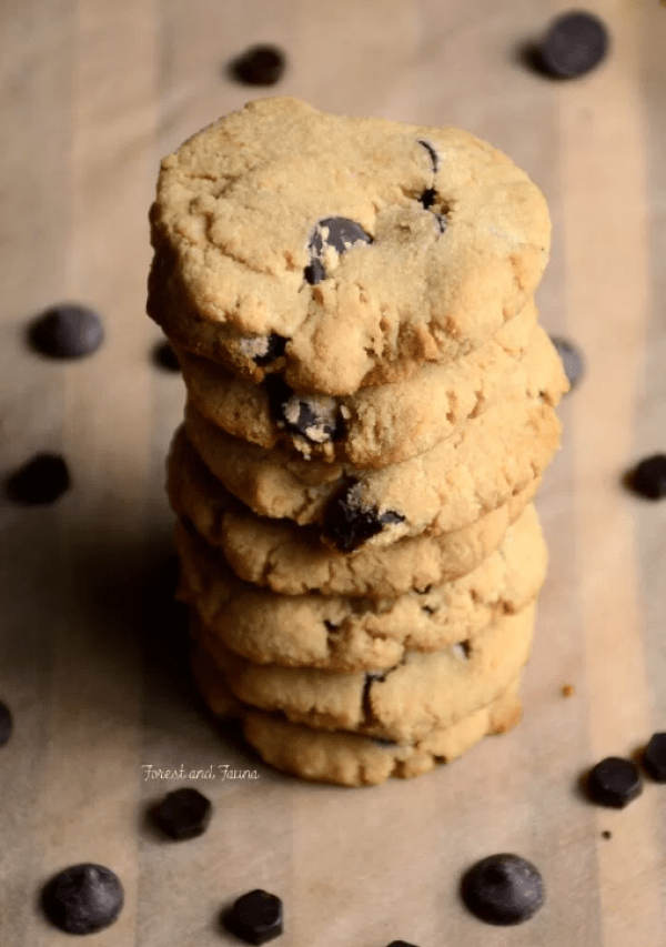 Low-Carb Chocolate Chip Cookies from Forest & Fauna at Allergy Free Thursdays gluten-free linky party. | RaiasRecipes.com