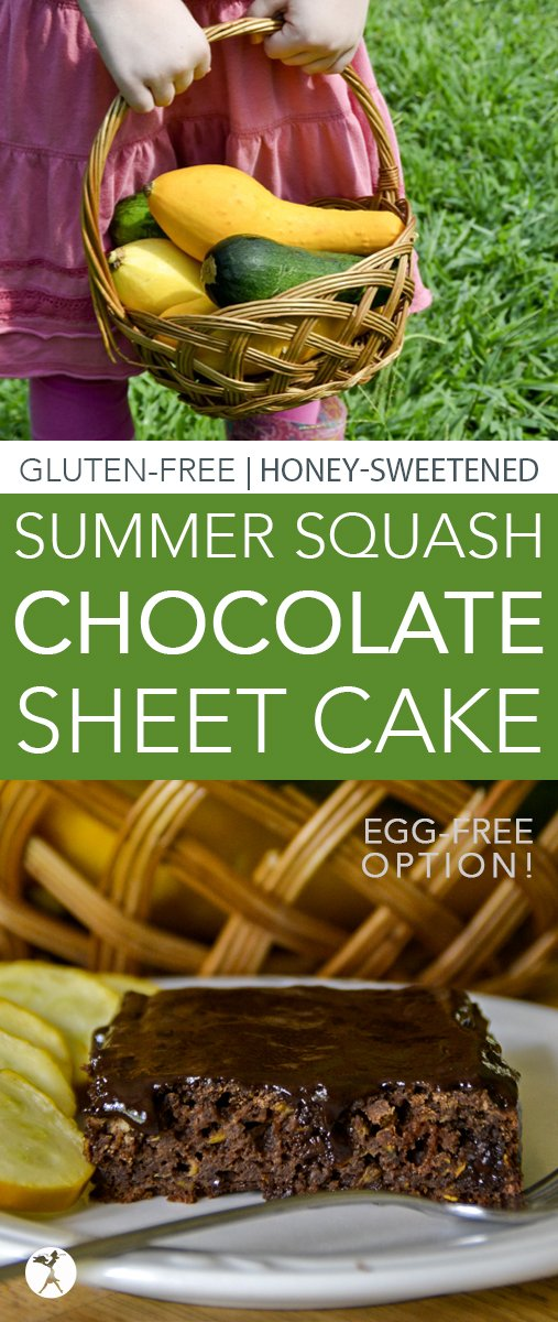 This easy, gluten-free, refined sugar-free Summer Squash Chocolate Sheet Cake is a great way to use up all that squash your summer garden has been producing!