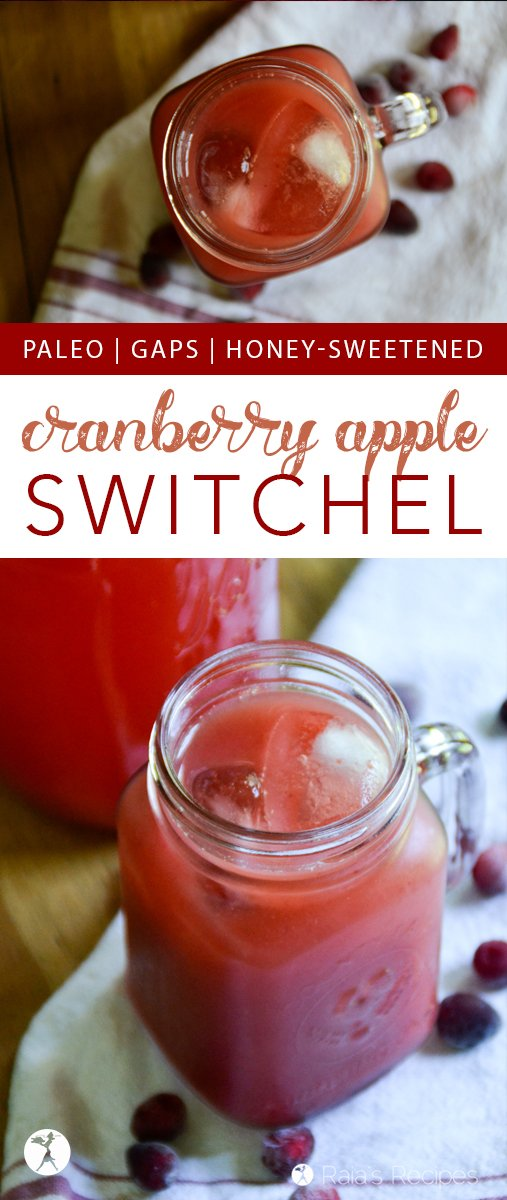 This festive Cranberry Apple Switchel is an easy and delicious ferment - perfect for keeping your body healthy during the holidays and throughout the year!