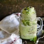Mint Chocolate Chip Blender Ice Cream