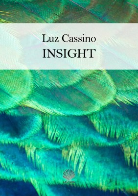 lcassino_insight_portada