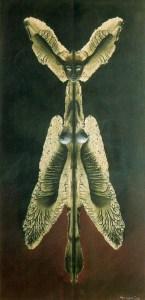 Mujer o el espíritu de la noche, Remedios Varo, 1952