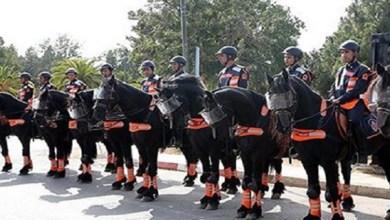 صورة نادي الفروسية الجديد للأمن الوطني يتوفر على حلبة رئيسية بمواصفات عالمية