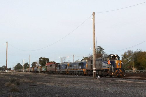 T385, TL154, TL155 and GM36 waiting line at Benalla on an up Oaklands train