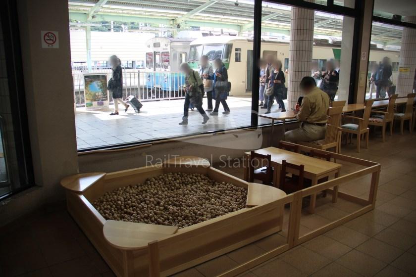 Odoriko 114 Izukyu-Shimoda Tokyo 015