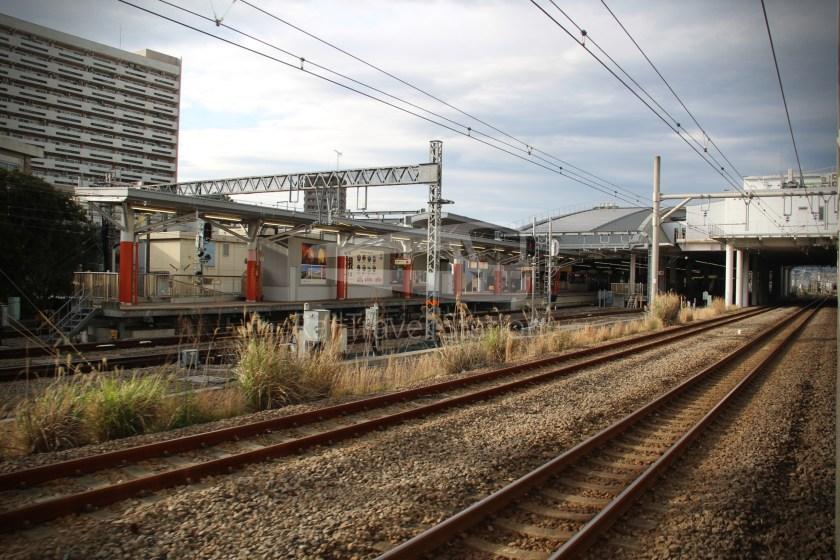 Odoriko 114 Izukyu-Shimoda Tokyo 110