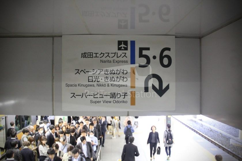 Super View Odoriko 3 Shinjuku Izukyu-Shimoda 001