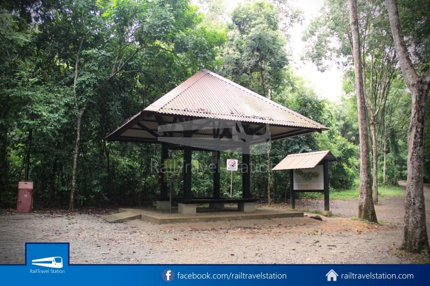 Pulau Ubin Taxi Van Chek Jawa Wetlands Main Jetty 002