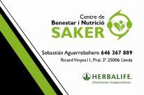 logo saker blog